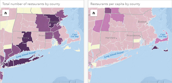 Create and use a choropleth map—Insights Create | ArcGIS on